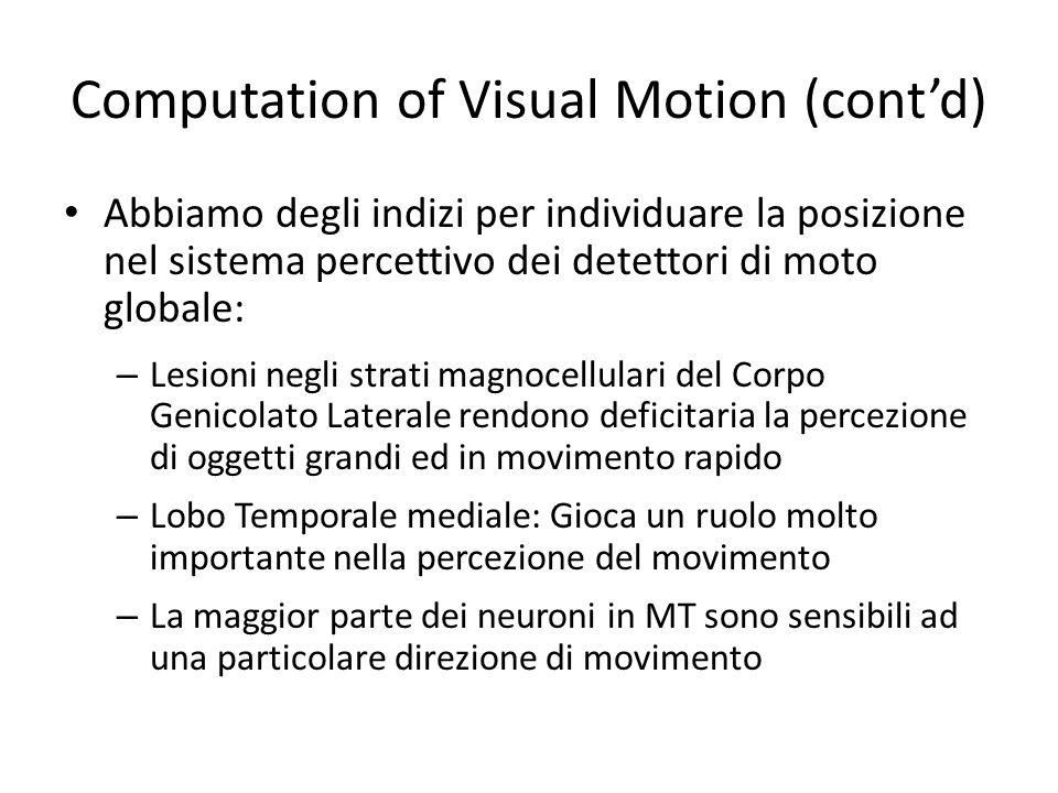 Computation of Visual Motion (contd) Abbiamo degli indizi per individuare la posizione nel sistema percettivo dei detettori di moto globale: – Lesioni