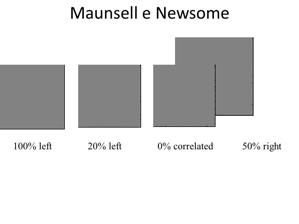 Maunsell e Newsome 100% left20% left0% correlated50% right