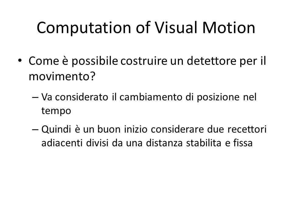 Computation of Visual Motion Come è possibile costruire un detettore per il movimento? – Va considerato il cambiamento di posizione nel tempo – Quindi