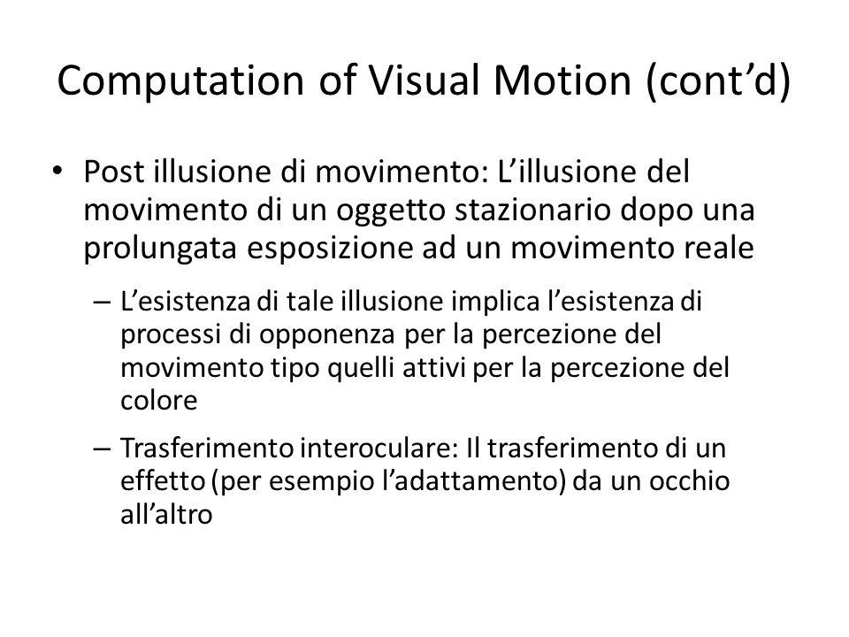 Computation of Visual Motion (contd) Post illusione di movimento: Lillusione del movimento di un oggetto stazionario dopo una prolungata esposizione a
