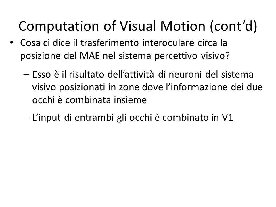Computation of Visual Motion (contd) Cosa ci dice il trasferimento interoculare circa la posizione del MAE nel sistema percettivo visivo? – Esso è il