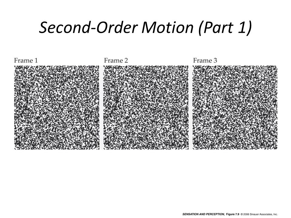 Second-Order Motion (Part 1)