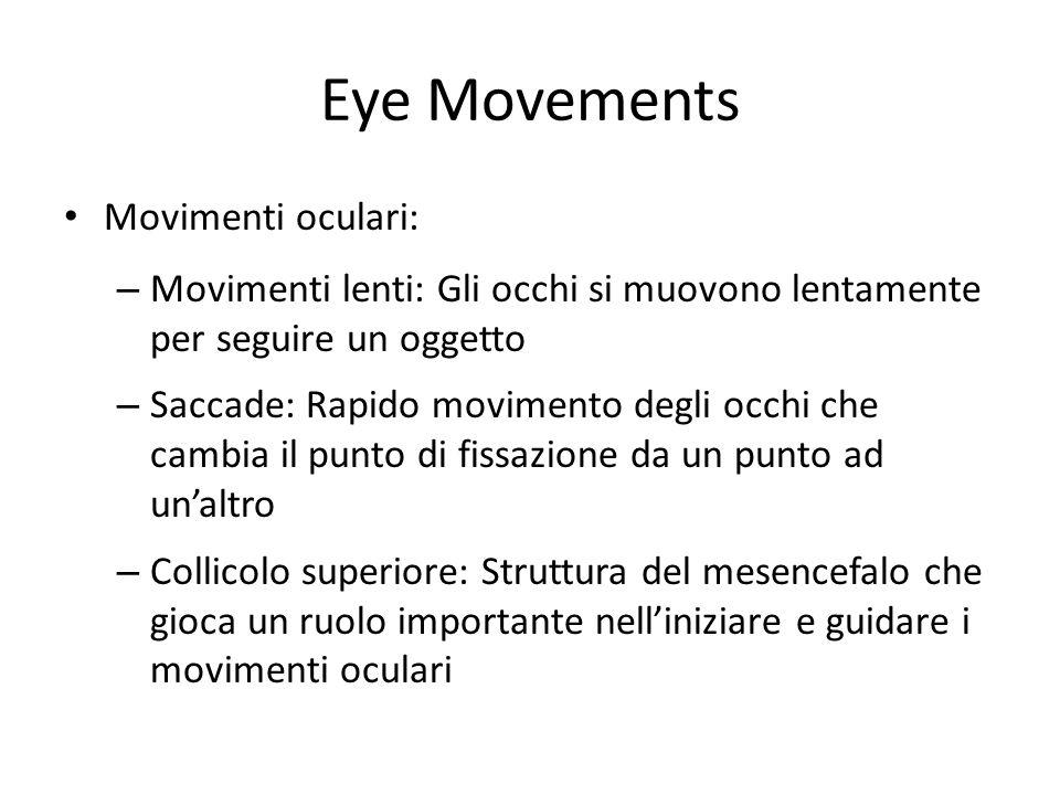 Eye Movements Movimenti oculari: – Movimenti lenti: Gli occhi si muovono lentamente per seguire un oggetto – Saccade: Rapido movimento degli occhi che
