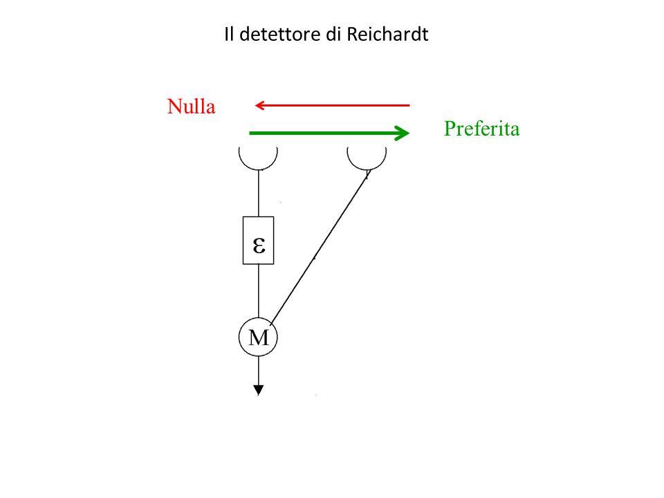 Il detettore di Reichardt Preferita Nulla