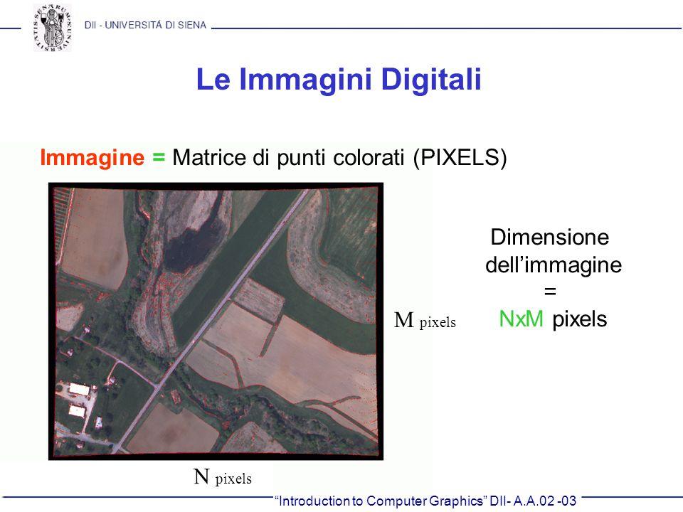 Introduction to Computer Graphics DII- A.A.02 -03 Le Immagini Digitali Immagine = Matrice di punti colorati (PIXELS) N pixels M pixels Dimensione dell