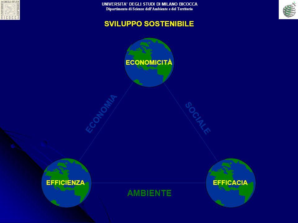 ECONOMIA SOCIALE AMBIENTE SVILUPPO SOSTENIBILE ECONOMICITÀ EFFICIENZAEFFICACIA UNIVERSITA DEGLI STUDI DI MILANO BICOCCA Dipartimento di Scienze dellAm