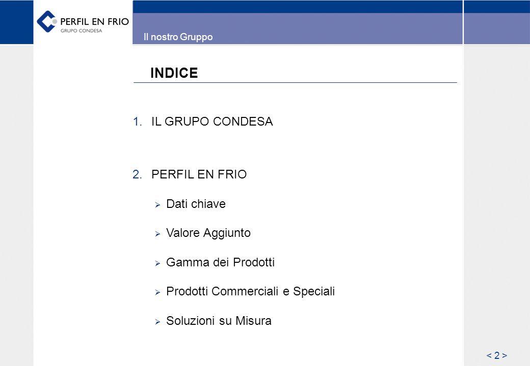 INDICE 1. IL GRUPO CONDESA 2.