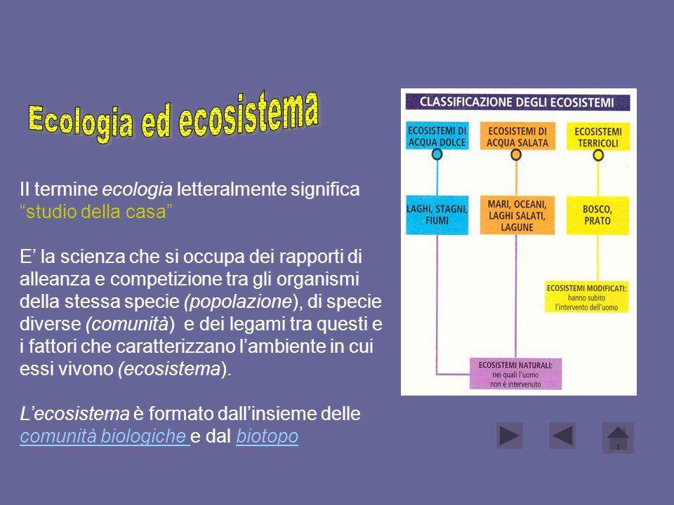 Il termine ecologia letteralmente significa studio della casa E la scienza che si occupa dei rapporti di alleanza e competizione tra gli organismi del