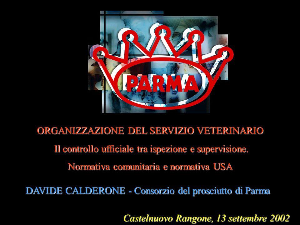 Castelnuovo Rangone, 13 settembre 2002 ORGANIZZAZIONE DEL SERVIZIO VETERINARIO Il controllo ufficiale tra ispezione e supervisione. Il controllo uffic
