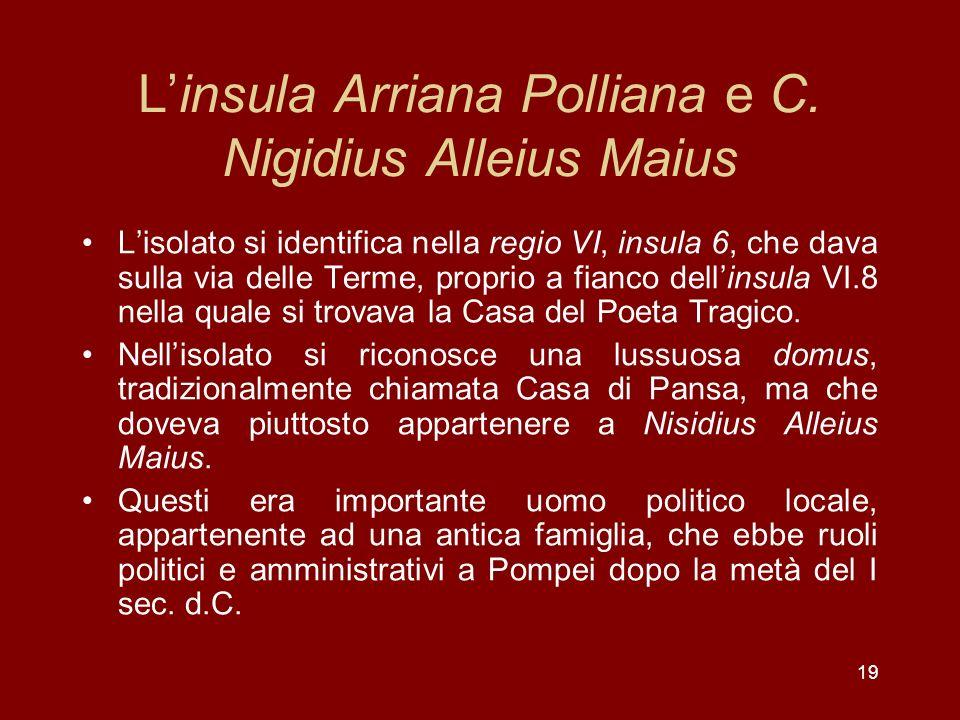 19 Linsula Arriana Polliana e C. Nigidius Alleius Maius Lisolato si identifica nella regio VI, insula 6, che dava sulla via delle Terme, proprio a fia