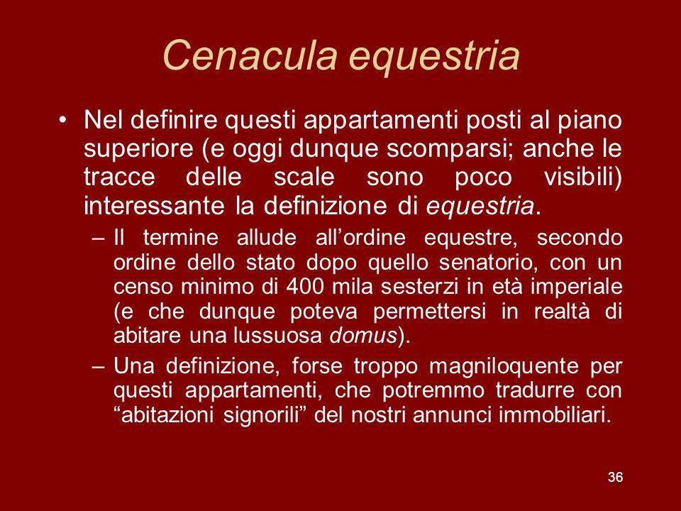 36 Cenacula equestria Nel definire questi appartamenti posti al piano superiore (e oggi dunque scomparsi; anche le tracce delle scale sono poco visibi