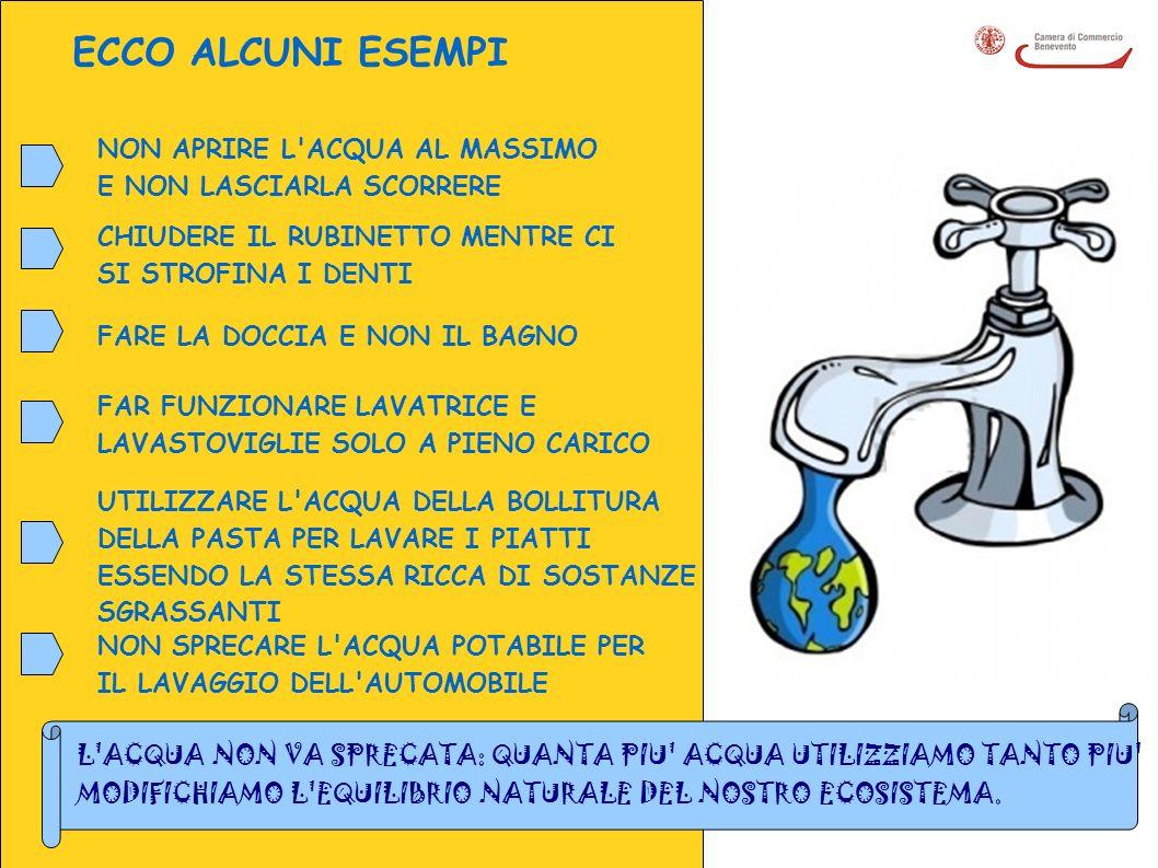 COS E L IMPIANTO DI COMPOSTAGGIO.