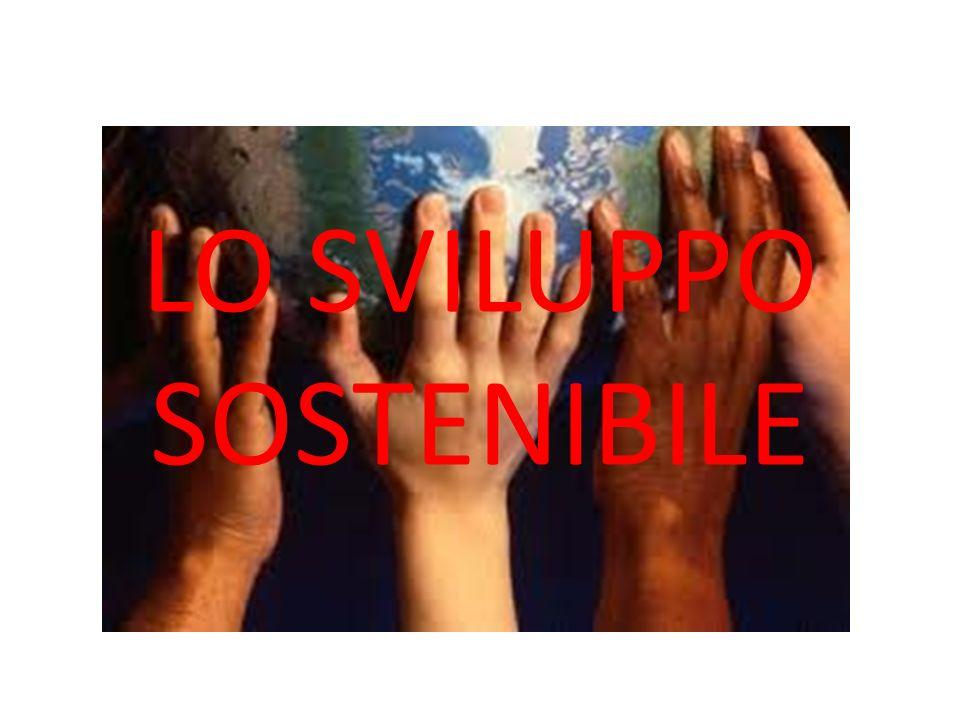 Sostenibilità sociale La sostenibilità sociale può essere definita come la capacità di garantire condizioni di benessere umano (sicurezza, salute, istruzione) equamente distribuite per classi e per genere.