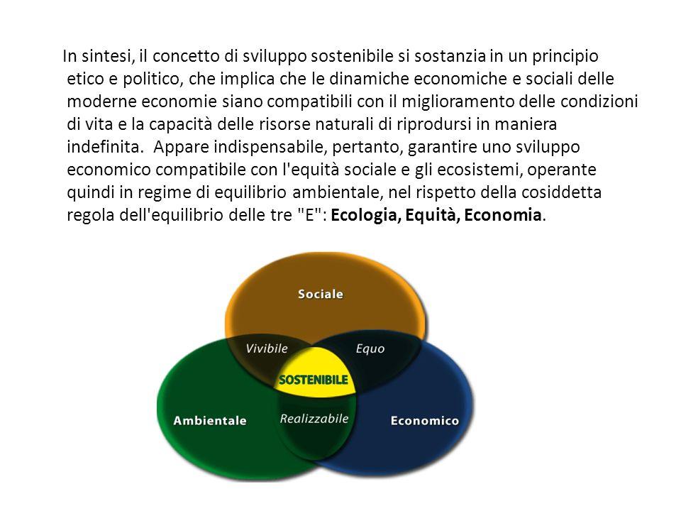 In sintesi, il concetto di sviluppo sostenibile si sostanzia in un principio etico e politico, che implica che le dinamiche economiche e sociali delle