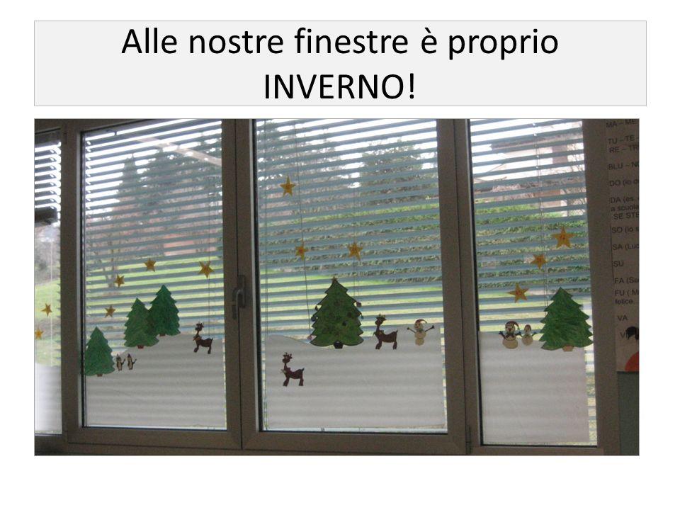 Alle nostre finestre è proprio INVERNO!