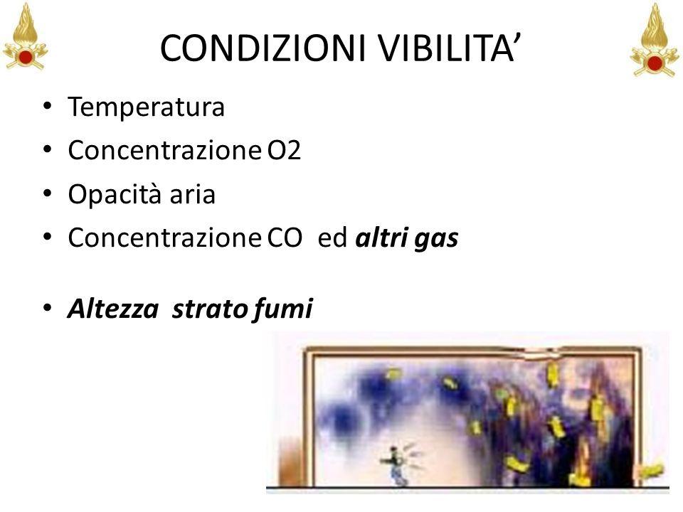 CONDIZIONI VIBILITA Temperatura Concentrazione O2 Opacità aria Concentrazione CO ed altri gas Altezza strato fumi