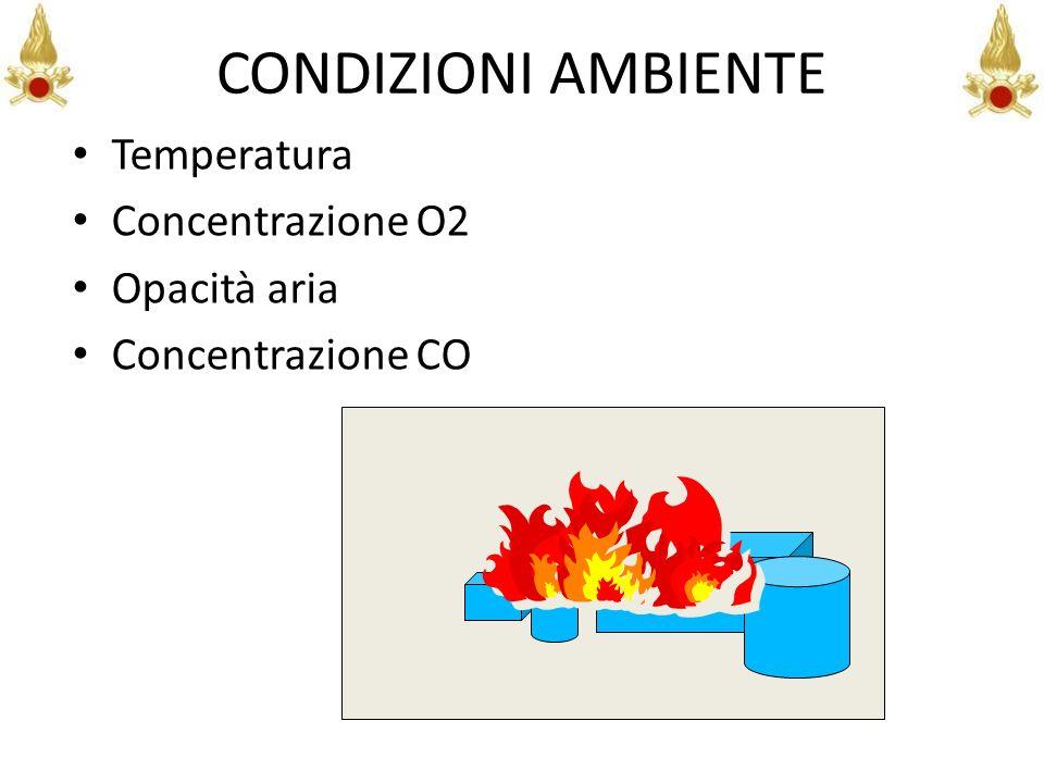 CONDIZIONI AMBIENTE Temperatura Concentrazione O2 Opacità aria Concentrazione CO