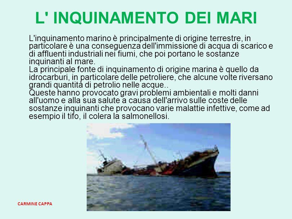 CARMINE CAPPA L INQUINAMENTO DEI MARI L inquinamento marino è principalmente di origine terrestre, in particolare è una conseguenza dell immissione di acqua di scarico e di affluenti industriali nei fiumi, che poi portano le sostanze inquinanti al mare.