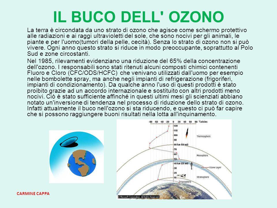 CARMINE CAPPA IL BUCO DELL OZONO La terra è circondata da uno strato di ozono che agisce come schermo protettivo alle radiazioni e ai raggi ultravioletti del sole, che sono nocivi per gli animali, le piante e per l uomo(tumori della pelle, cecità).