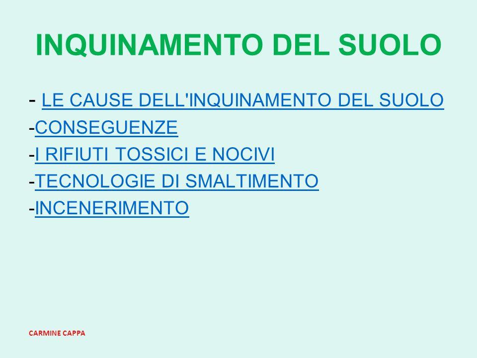 CARMINE CAPPA INQUINAMENTO DEL SUOLO - LE CAUSE DELL INQUINAMENTO DEL SUOLO LE CAUSE DELL INQUINAMENTO DEL SUOLO -CONSEGUENZECONSEGUENZE -I RIFIUTI TOSSICI E NOCIVII RIFIUTI TOSSICI E NOCIVI -TECNOLOGIE DI SMALTIMENTOTECNOLOGIE DI SMALTIMENTO -INCENERIMENTOINCENERIMENTO