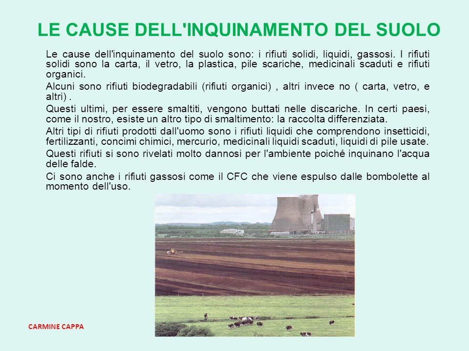 CARMINE CAPPA LE CAUSE DELL INQUINAMENTO DEL SUOLO Le cause dell inquinamento del suolo sono: i rifiuti solidi, liquidi, gassosi.