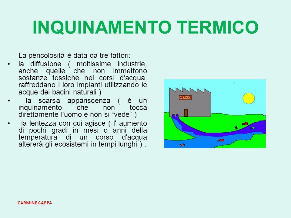 CARMINE CAPPA INQUINAMENTO TERMICO La pericolosità è data da tre fattori: la diffusione ( moltissime industrie, anche quelle che non immettono sostanze tossiche nei corsi d acqua, raffreddano i loro impianti utilizzando le acque dei bacini naturali ) la scarsa appariscenza ( è un inquinamento che non tocca direttamente l uomo e non si vede ) la lentezza con cui agisce ( l aumento di pochi gradi in mesi o anni della temperatura di un corso d acqua altererà gli ecosistemi in tempi lunghi ).