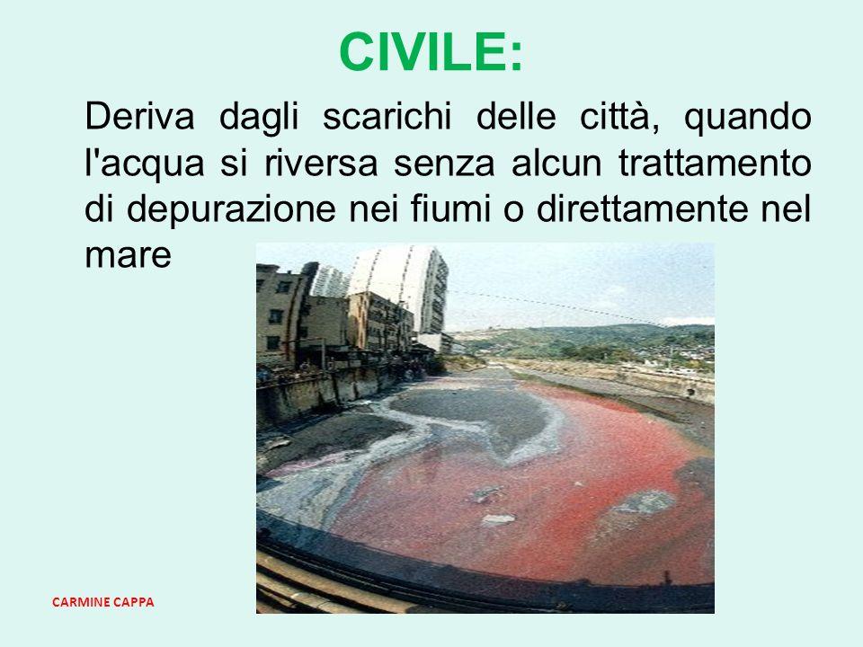 CARMINE CAPPA CIVILE: Deriva dagli scarichi delle città, quando l acqua si riversa senza alcun trattamento di depurazione nei fiumi o direttamente nel mare
