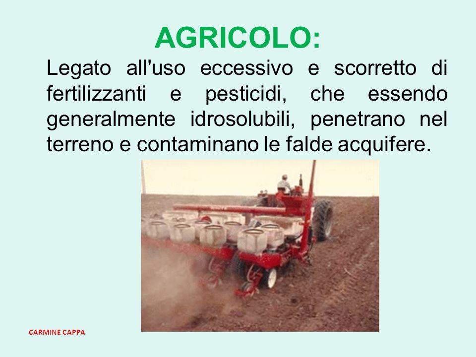 CARMINE CAPPA AGRICOLO: Legato all uso eccessivo e scorretto di fertilizzanti e pesticidi, che essendo generalmente idrosolubili, penetrano nel terreno e contaminano le falde acquifere.