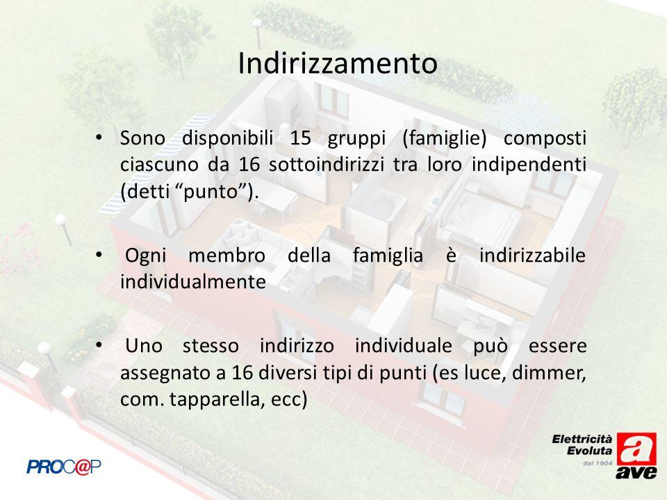 Indirizzamento Sono disponibili 15 gruppi (famiglie) composti ciascuno da 16 sottoindirizzi tra loro indipendenti (detti punto). Ogni membro della fam