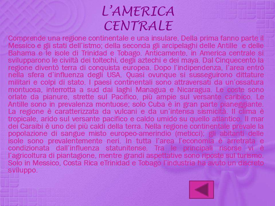 LAMERICA CENTRALE Comprende una regione continentale e una insulare. Della prima fanno parte il Messico e gli stati dellistmo; della seconda gli arcip