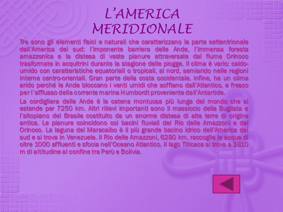 LAMERICA MERIDIONALE Tre sono gli elementi fisici e naturali che caratterizzano la parte settentrionale dellAmerica del sud: limponente barriera delle