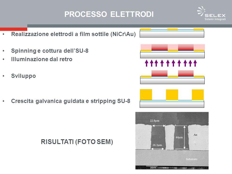 PROCESSO ELETTRODI Realizzazione elettrodi a film sottile (NiCr\Au) Spinning e cottura dellSU-8 Illuminazione dal retro Sviluppo Crescita galvanica guidata e stripping SU-8 RISULTATI (FOTO SEM)
