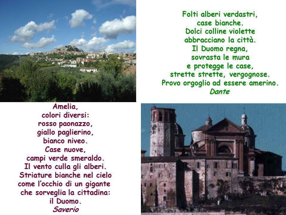 Folti alberi verdastri, case bianche. Dolci colline violette abbracciano la città. Il Duomo regna, sovrasta le mura e protegge le case, strette strett