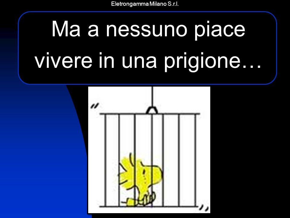 Eletrongamma Milano S.r.l. I nostri servizi Sopralluoghi e preventivi gratuiti senza impegno