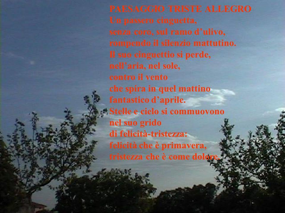 PAESAGGIO TRISTE ALLEGRO Un passero cinguetta, senza coro, sul ramo dulivo, rompendo il silenzio mattutino.