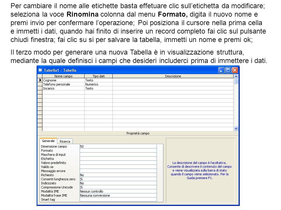 Per cambiare il nome alle etichette basta effetuare clic sulletichetta da modificare; seleziona la voce Rinomina colonna dal menu Formato, digita il n