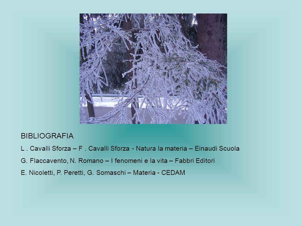 BIBLIOGRAFIA L. Cavalli Sforza – F. Cavalli Sforza - Natura la materia – Einaudi Scuola G. Flaccavento, N. Romano – I fenomeni e la vita – Fabbri Edit