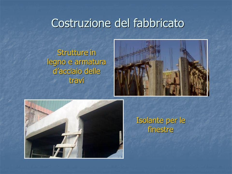 Strutture in legno e armatura dacciaio delle travi Costruzione del fabbricato Isolante per le finestre