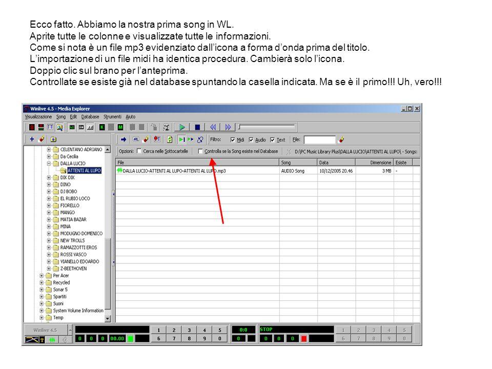 Ecco fatto. Abbiamo la nostra prima song in WL. Aprite tutte le colonne e visualizzate tutte le informazioni. Come si nota è un file mp3 evidenziato d