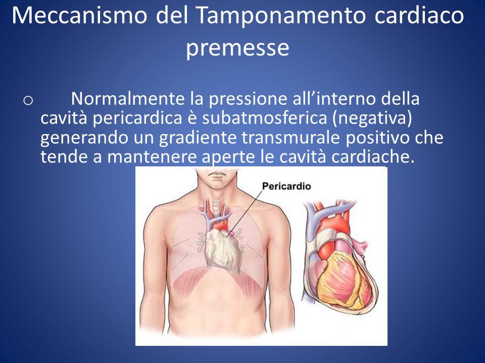 Casistica: complicanze o Mortalità 2 casi o Penetrazione AD o VD ca 0,5 % o Disfunzione VDx 1 o Bradicardia in ca.
