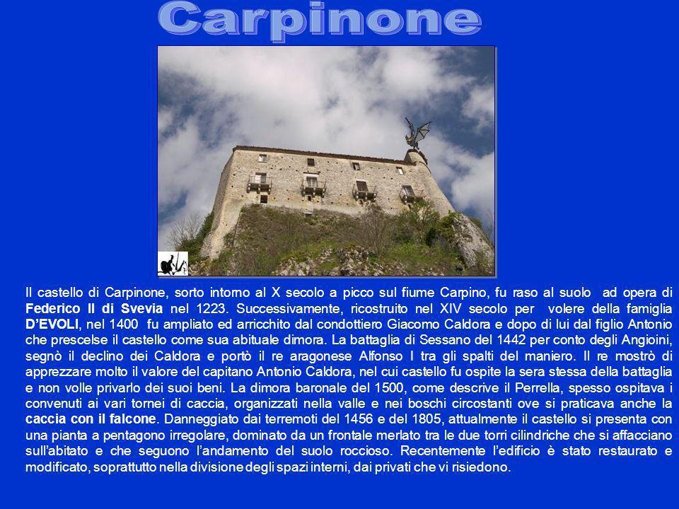 Il castello di Carpinone, sorto intorno al X secolo a picco sul fiume Carpino, fu raso al suolo ad opera di Federico II di Svevia nel 1223. Successiva