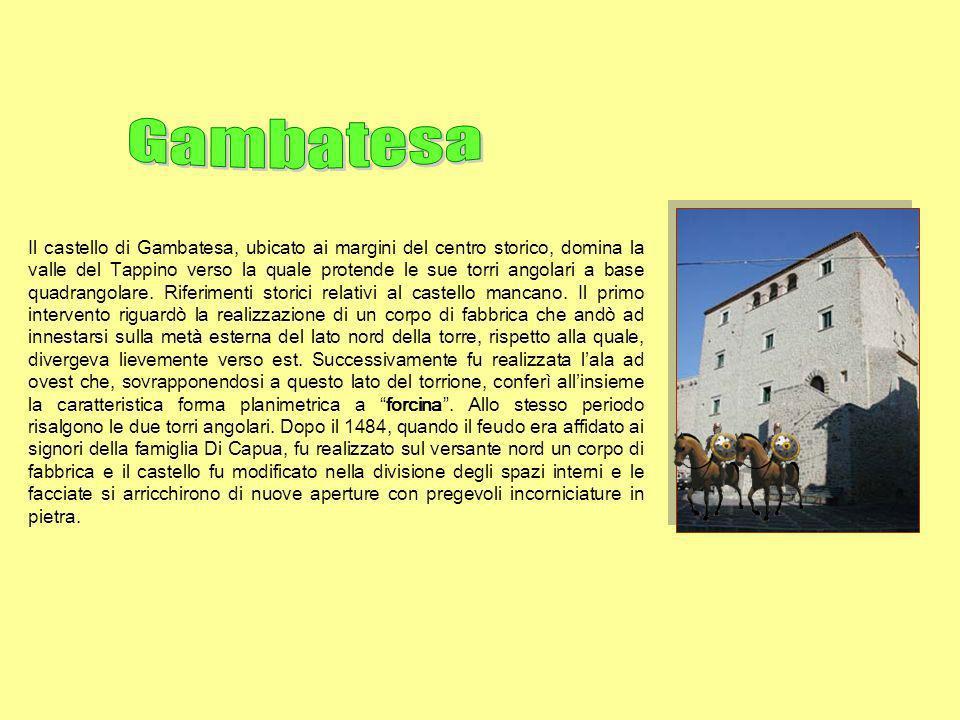 Il castello di Gambatesa, ubicato ai margini del centro storico, domina la valle del Tappino verso la quale protende le sue torri angolari a base quad