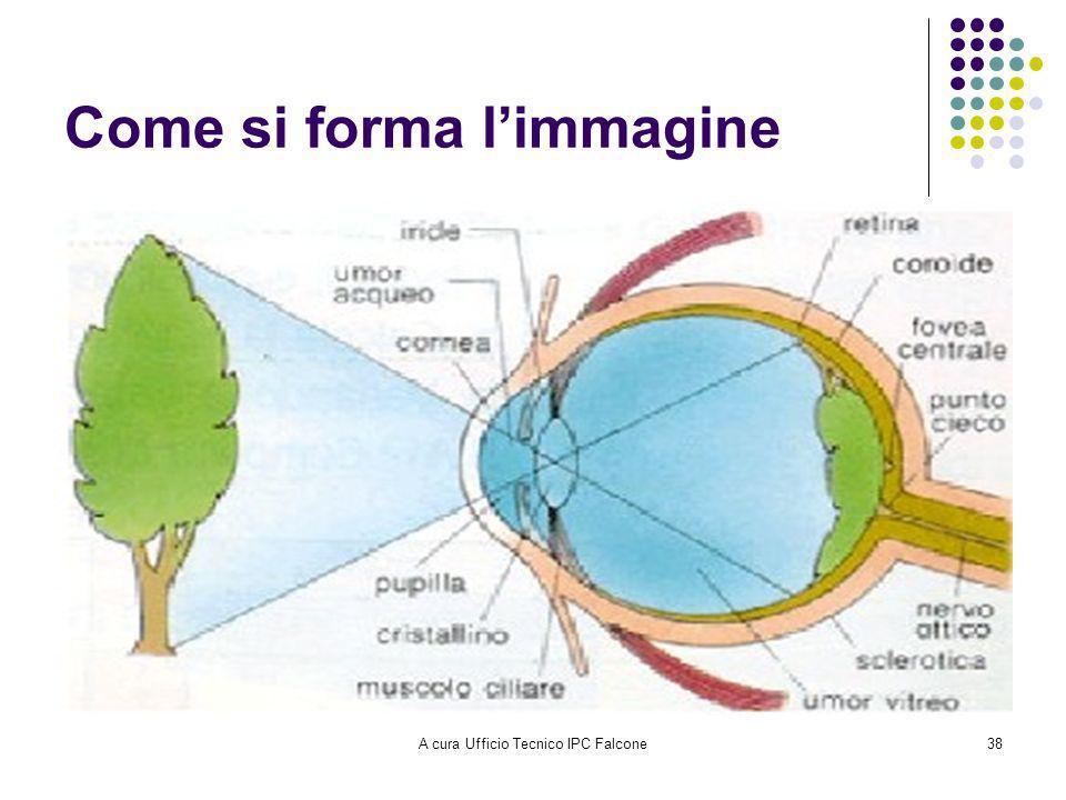 A cura Ufficio Tecnico IPC Falcone38 Come si forma limmagine