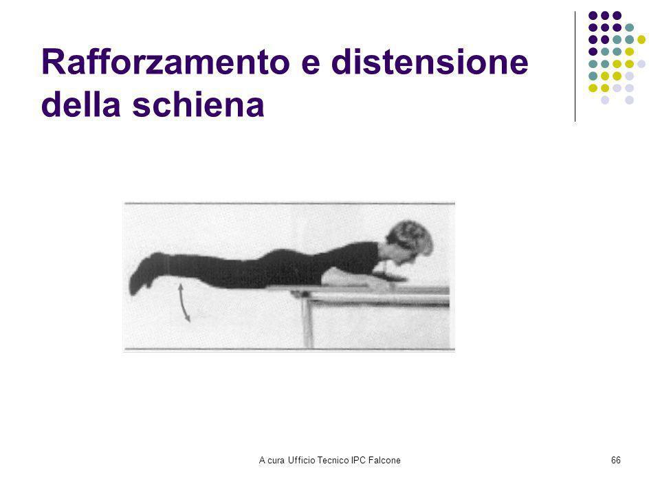 A cura Ufficio Tecnico IPC Falcone66 Rafforzamento e distensione della schiena