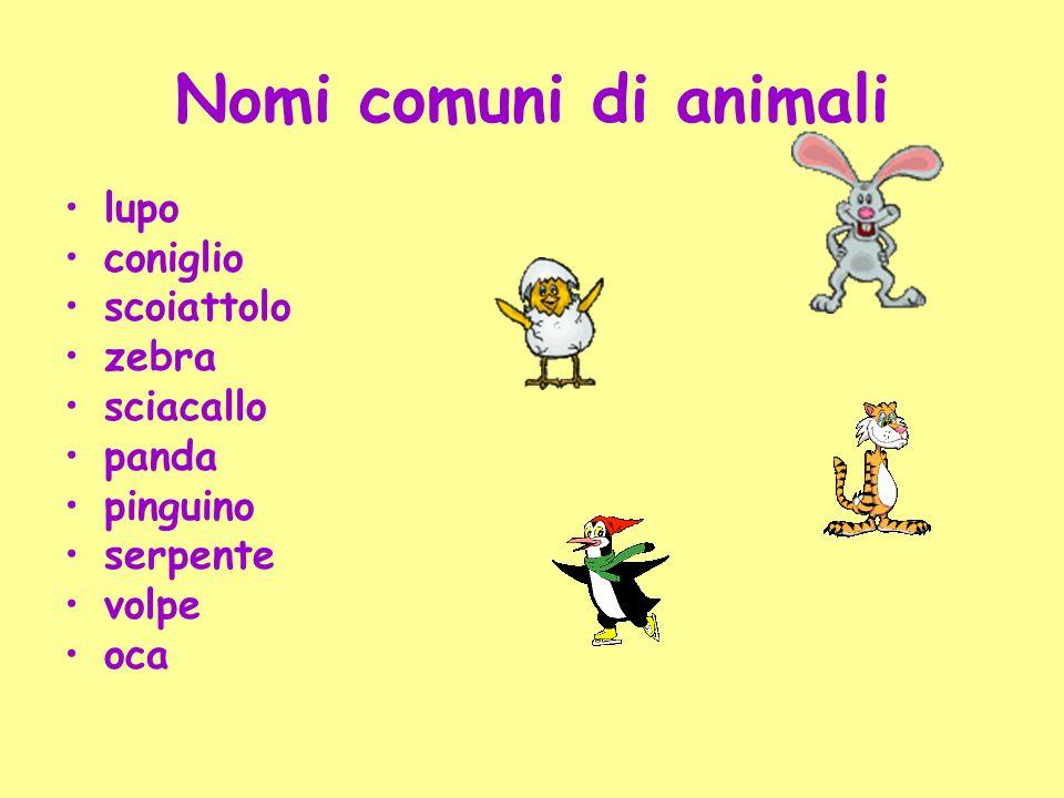 Nomi comuni di animali lupo coniglio scoiattolo zebra sciacallo panda pinguino serpente volpe oca