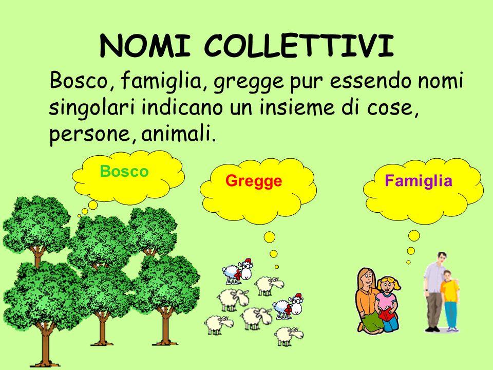 NOMI COLLETTIVI Bosco, famiglia, gregge pur essendo nomi singolari indicano un insieme di cose, persone, animali. Bosco Gregge Famiglia