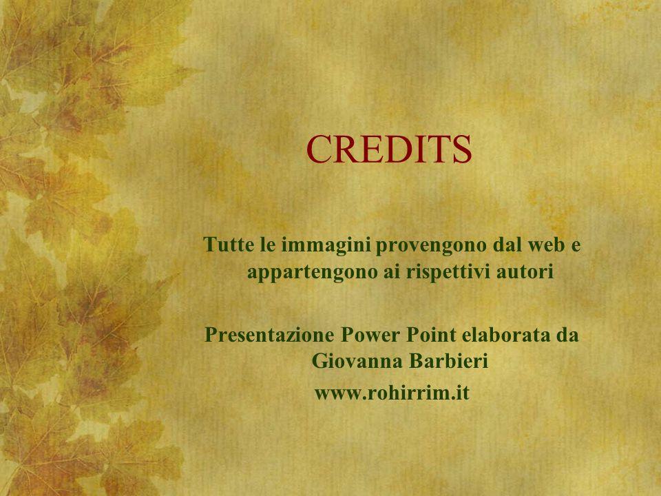 CREDITS Tutte le immagini provengono dal web e appartengono ai rispettivi autori Presentazione Power Point elaborata da Giovanna Barbieri www.rohirrim.it