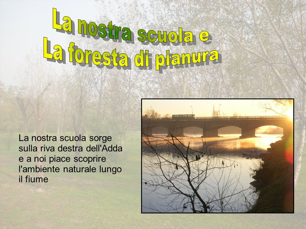 La nostra scuola sorge sulla riva destra dell Adda e a noi piace scoprire l ambiente naturale lungo il fiume