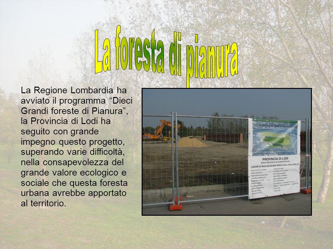 La Regione Lombardia ha avviato il programma Dieci Grandi foreste di Pianura, la Provincia di Lodi ha seguito con grande impegno questo progetto, superando varie difficoltà, nella consapevolezza del grande valore ecologico e sociale che questa foresta urbana avrebbe apportato al territorio.