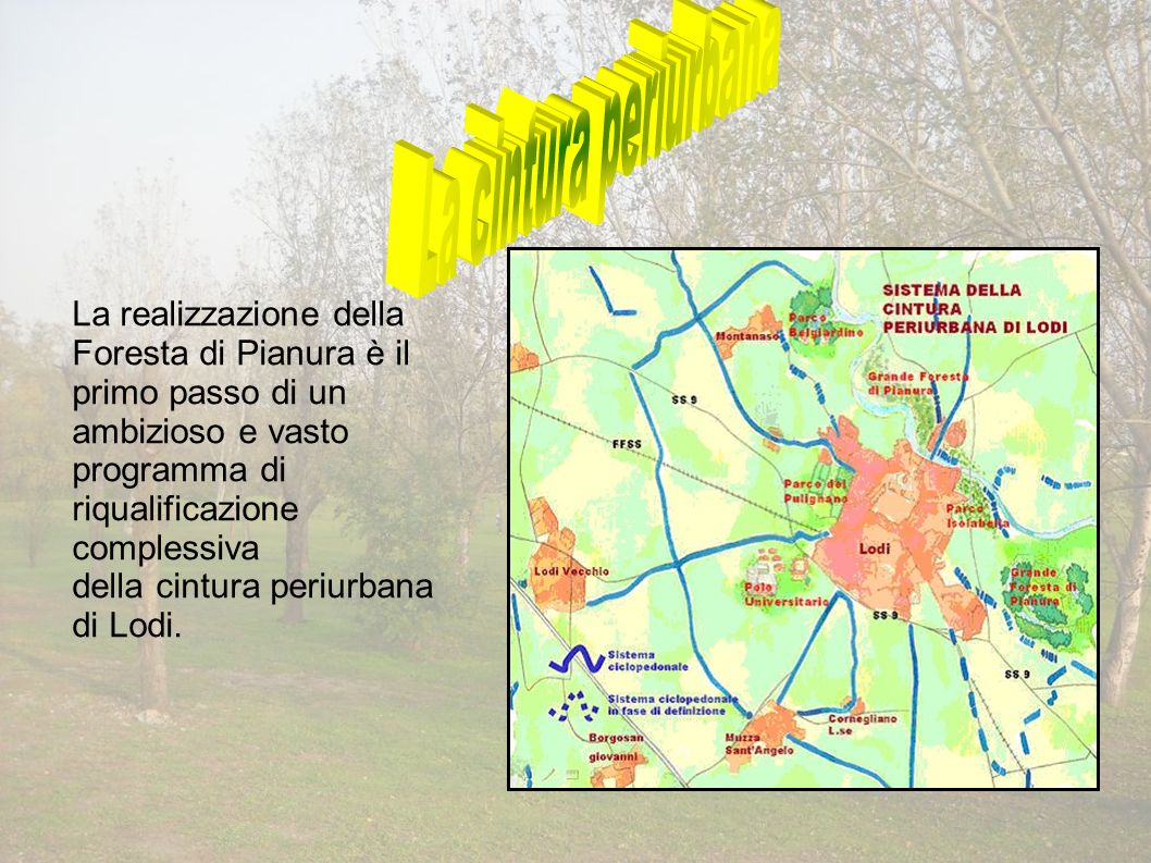 La realizzazione della Foresta di Pianura è il primo passo di un ambizioso e vasto programma di riqualificazione complessiva della cintura periurbana di Lodi.